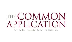 independent educational consultant, college counselor, common application